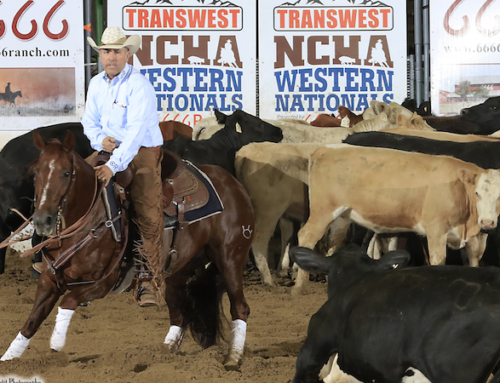 NCHA Western Nationals Called Off